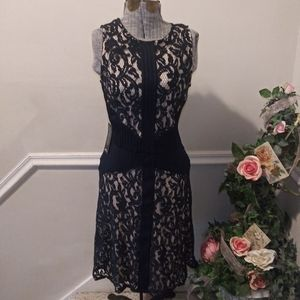NWT The Limited Navy Fabric & Lace Illusion Dress